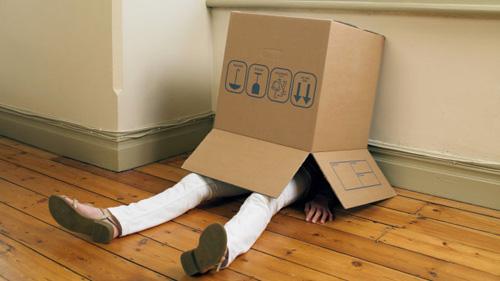 bad-hiding-under-box.jpg